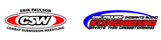 cropped-csw-stx-logo-black-letters-300x75.png