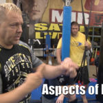 Aspects of Boxing