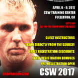2017-csw-wc-poster-01